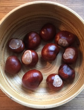 conkers in a bowl